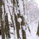 Schwebende Schneekugel / Floating snowsphere