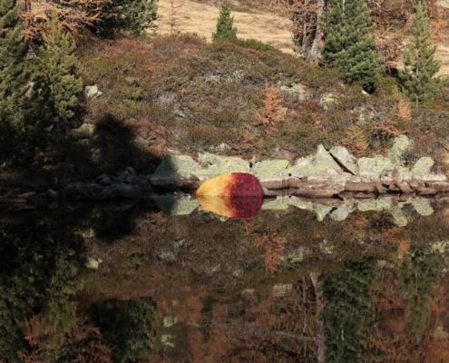 Spiegelung III / Reflection III